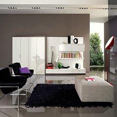 A Brilliant Idea Modern Designer Living Rooms - Karbonix