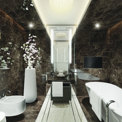 Apartment Gorgeous Bathroom Design With Luxury Black Marbles Wall - Karbonix