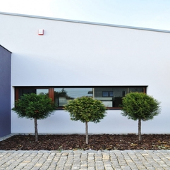 Architecture Fancy Triple Small Tree On The Gravels M House - Karbonix