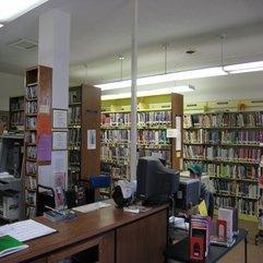 Astonishing Desk And Shelves - Karbonix