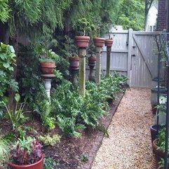 Backyard Landscaping Ideas Bonsai Tree - Karbonix
