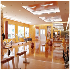 Ball Gym Also Modern Treadmills Running With Orange Wall And Parquet Floor Lovely Orange - Karbonix