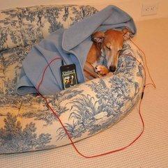 Beds Made Of Mattress Beautiful Dog - Karbonix