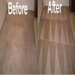 Flat Rate Carpet Cleaning Any 3 Rooms 70 00 Household - Karbonix