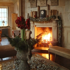Free Download HD Wallpaper Gorgeous Red Flower And Fireplace New Year Home - Karbonix