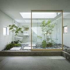 Interior Enchanting Transparent Glass Wall With Captivating Green - Karbonix