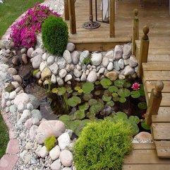 Landscaping Ponds Near Home Pretty Backyard - Karbonix