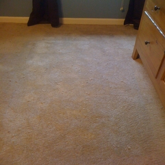 Memphis Apartment Carpet Pet Damage Repaired Memphis Carpet Repair - Karbonix
