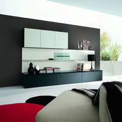 Modern Homes Modern Shelving - Karbonix