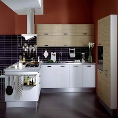 Picture Gallery For Your Inspirations With Shiny Floor Kitchen Cabinet - Karbonix