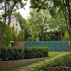 Plants In Home Garden In Green - Karbonix