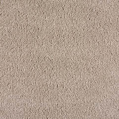 Shop Fresh Outlook Neutral Ground Textured Indoor Carpet At Lowes - Karbonix