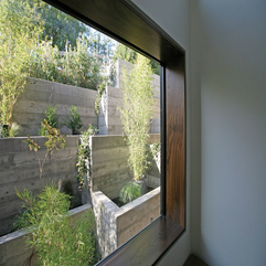 Small Garden Viewed From Inside Through Glazed Window Plants In - Karbonix