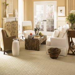 SMART Carpet And Flooring Stories NEED NEW CARPET OR FLOORING - Karbonix