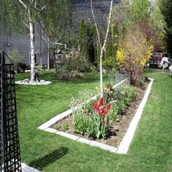 Stones With Tulip Flower Plants Landscaping Edging - Karbonix