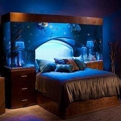 Tank Decoration Ideas Headboard Fish - Karbonix