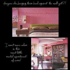Trendy Pink Walls In Bedroom And Kitchen Coosyd Interior - Karbonix